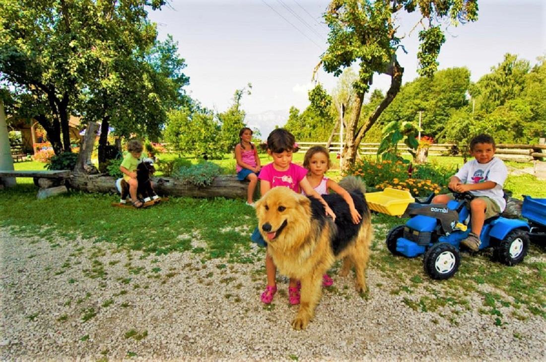 Hund Wolfi spielt mit den Kindern