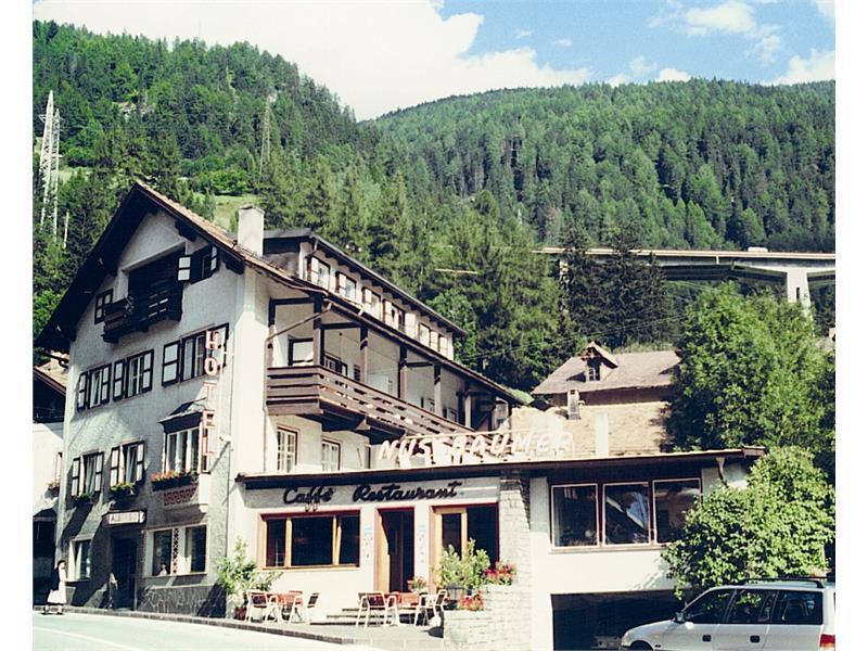 Soggiorno alpino colle isarco ~ mattsole.com