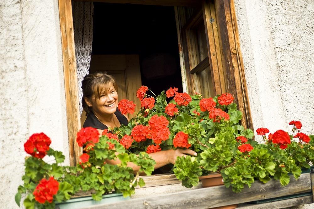 Annemarie und ihre Blumen...