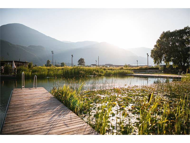 Natural Swimming Pool Gargazon /Gargazzone