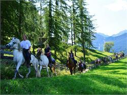 Horse Trekking Mareo