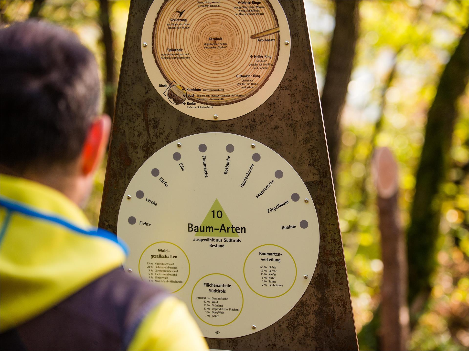 Termeno Nature Experience Trail (Naturerlebnisweg Tramin)