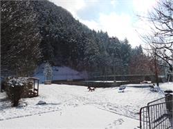 Natur- Eislaufplatz Kiens Spielplatz