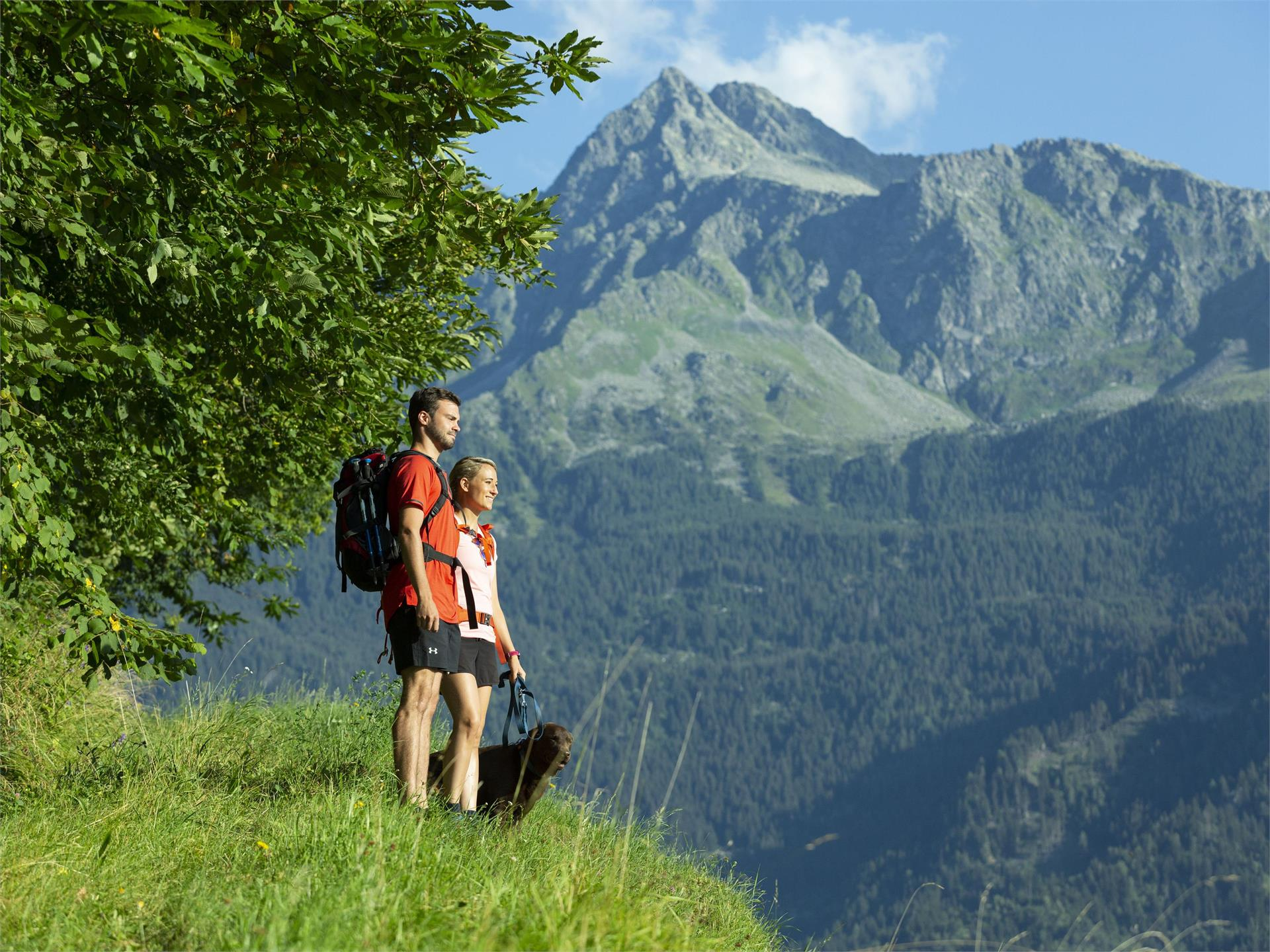 Hiking on the Marling Höhenweg Trail