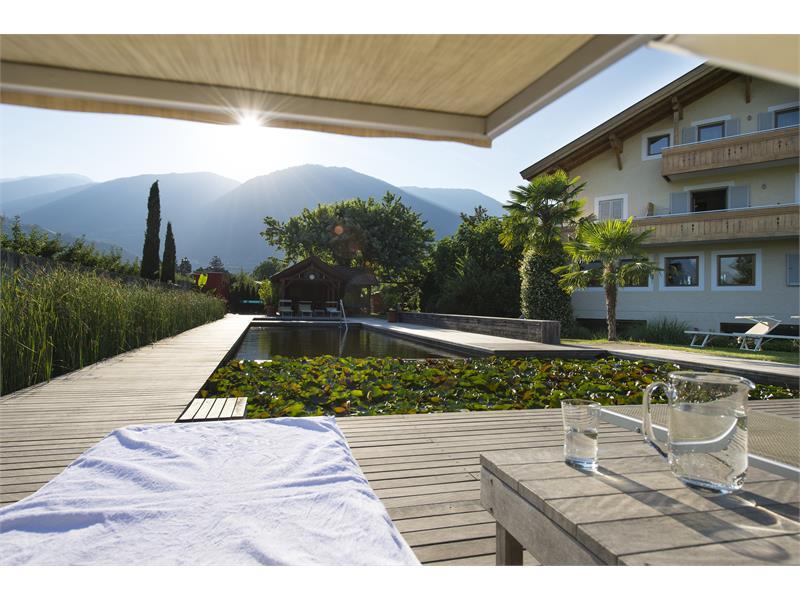 Weinsepphof area piscina