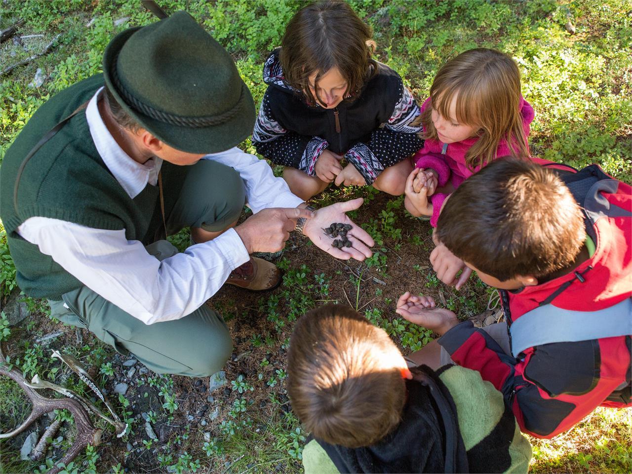Daksy's Nature Workshop - passeggiata con quiz al Passo delle Erbe