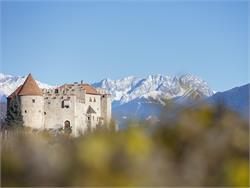 Frühjahrsausstellung mit Peter Fellin auf Schloss Kastelbell