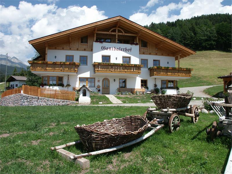 Ganthalerhof ad Avelengo