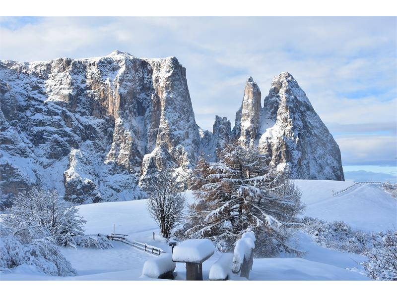 Alpe di Siusi in winter