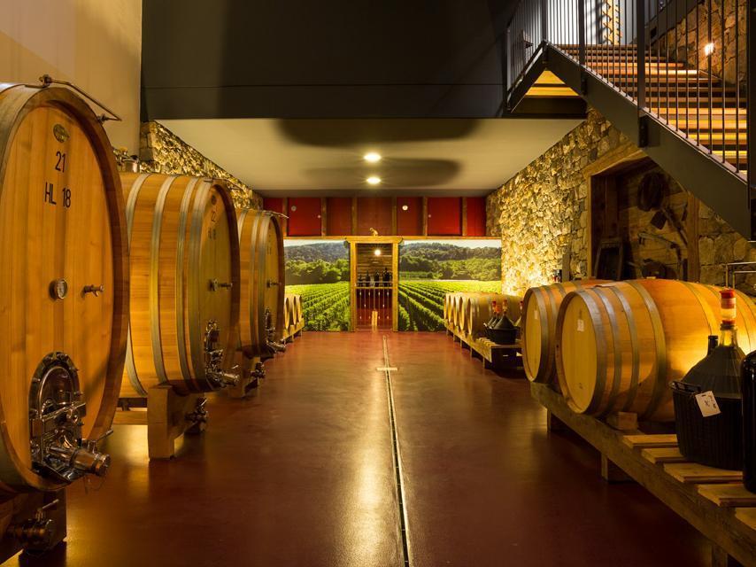 vineyard Plonerhof