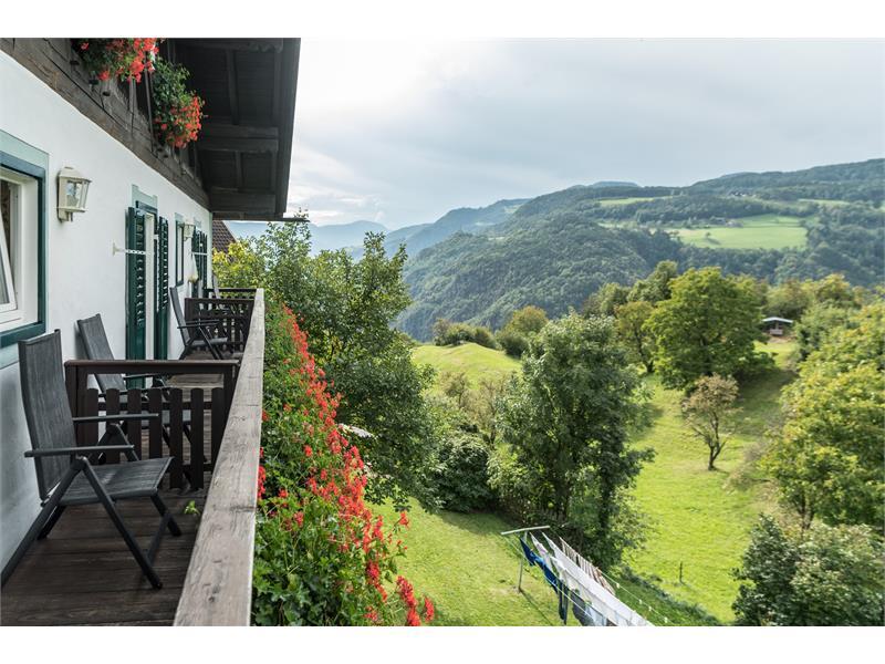 Vista panoramica dal Tschötscherhof