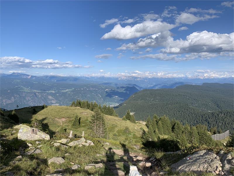 Vista dalla montagna (Monte Luco)