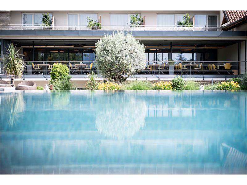 Infinity Pool Hotel Pfeiss