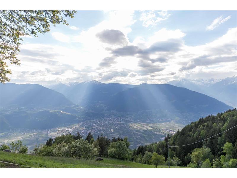 Vista panoramica sulla Val d'Adige - Maso Gruberhof a Verano, Alto Adige