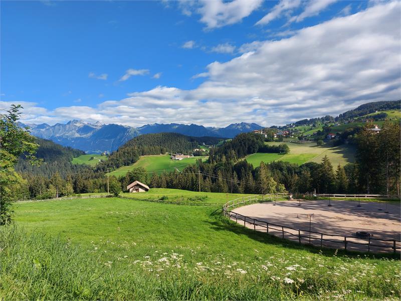 Gfreinhof in Hafling, Südtirol