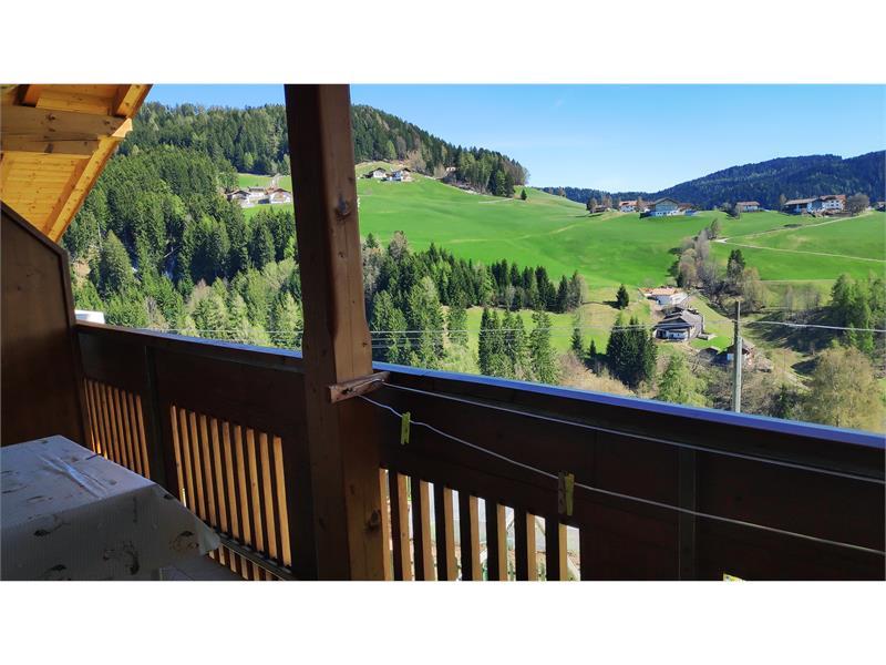 Vista panoramica - Wieserhof ad Avelengo