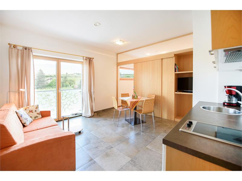 Wohnzimmer mit Küchenzeile und Schlafsofa