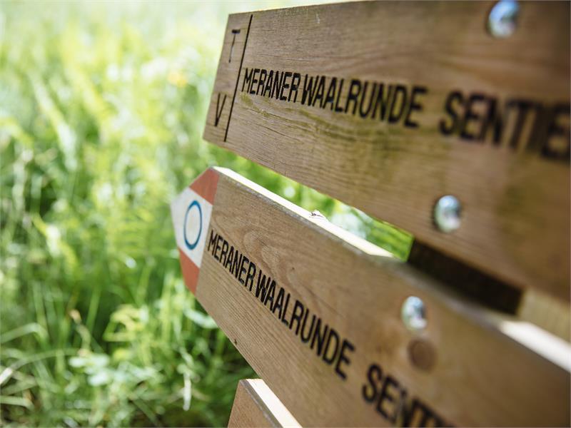 Passeggiata lungo il Waalweg di Saltusio
