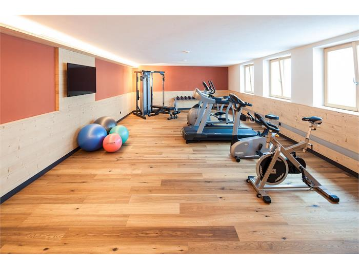 Sonus Alpis fitness room