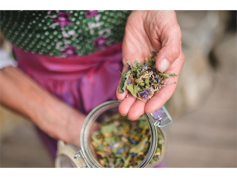 Kräuter für Tee