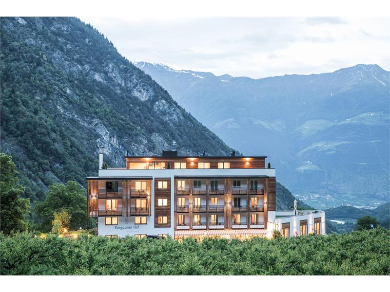 Hotel Burgaunerhof