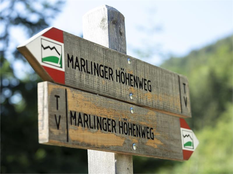 L'Alta Via di Marlengo