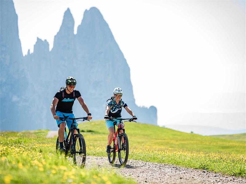 Alpe di Siusi Tour delle malghe