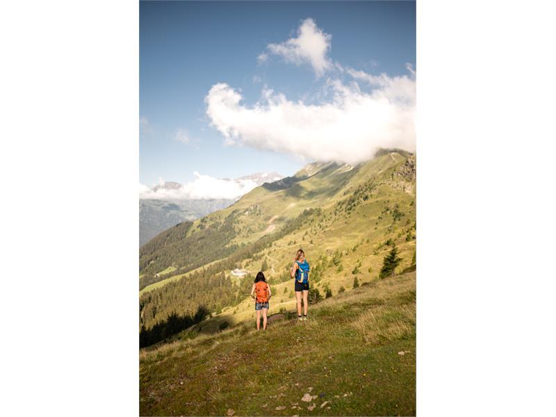Telfer Weisse Rosskopf South Tyrol