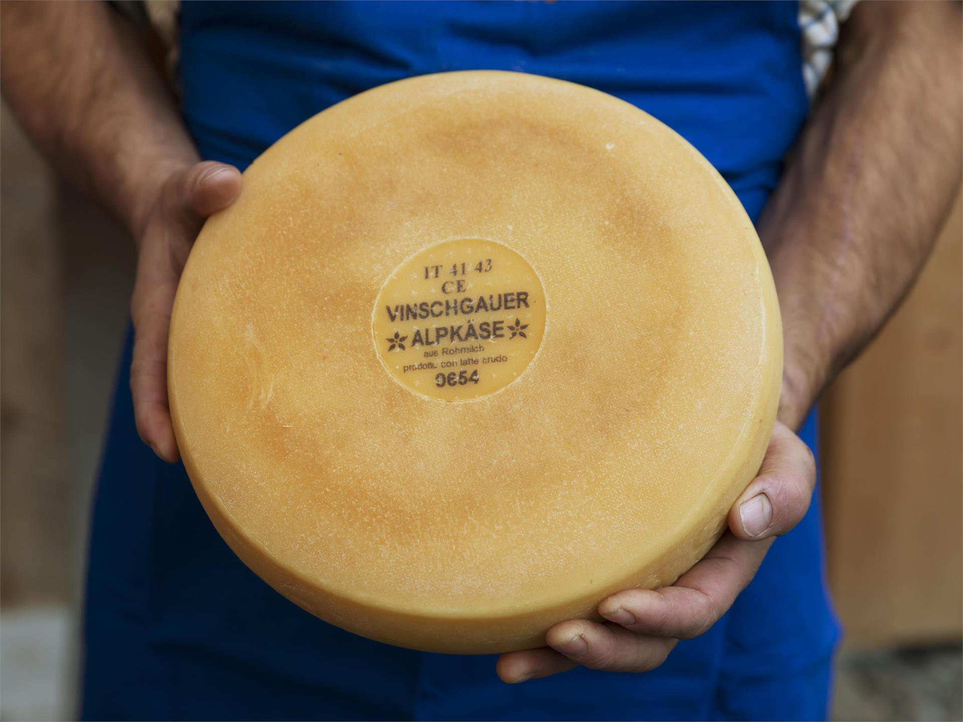 Degustazione di formaggi dalla malgal Penaud