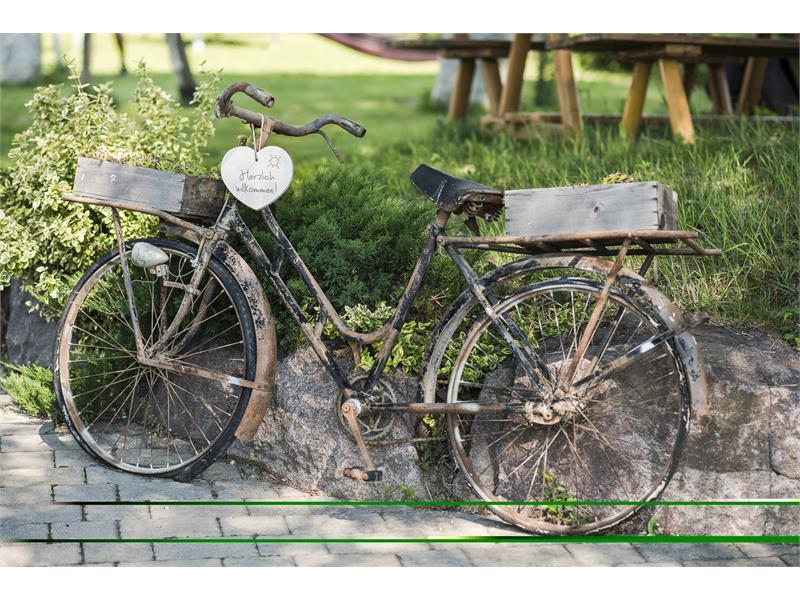 bici romantico