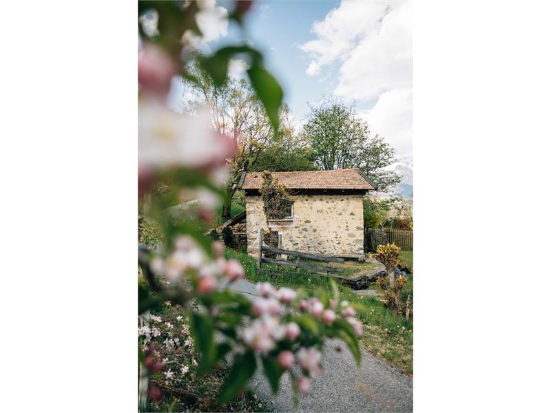 Molino Tschafoier al sentiero delle mele - Tirolo