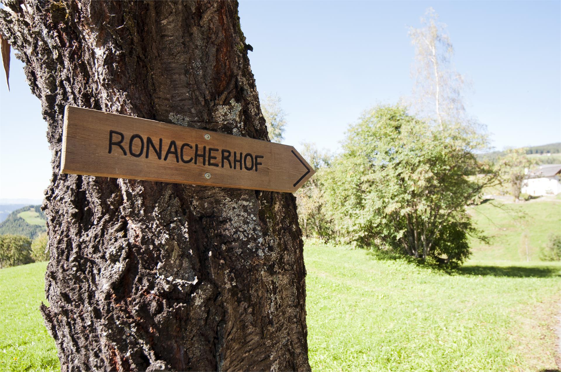 Ronacherhof Collalbo Renon