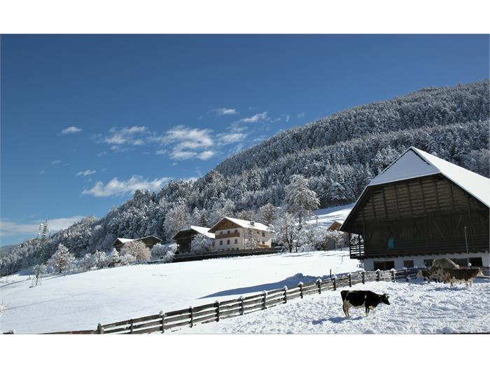 Obermalid in the winter