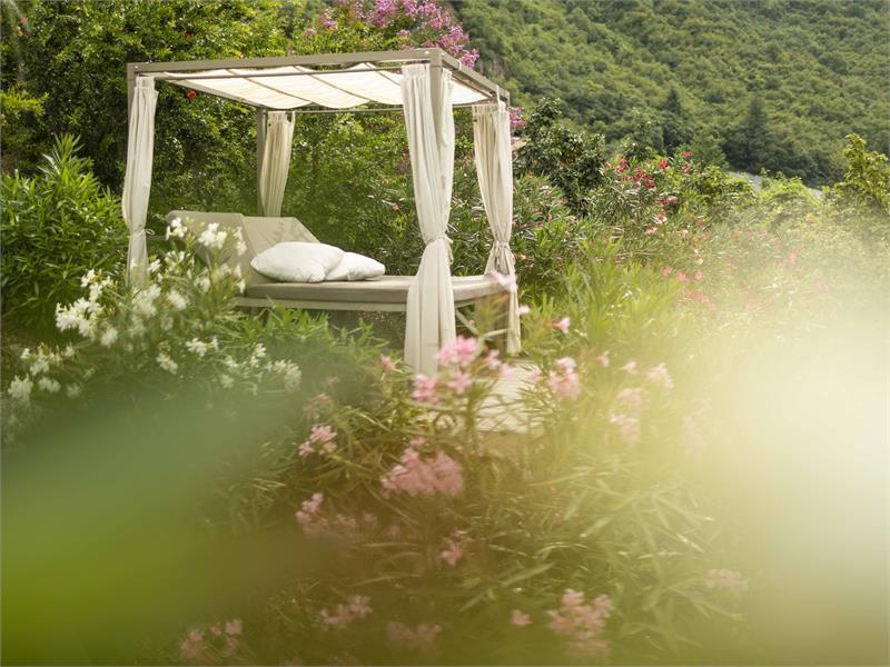 theiner's garten Garten