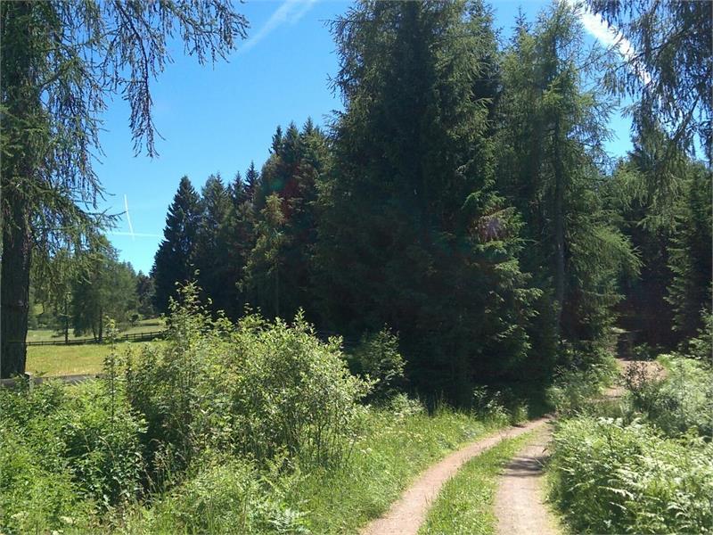 Sentiero Tschaufen