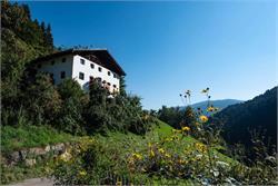 Mitterbirbachhof