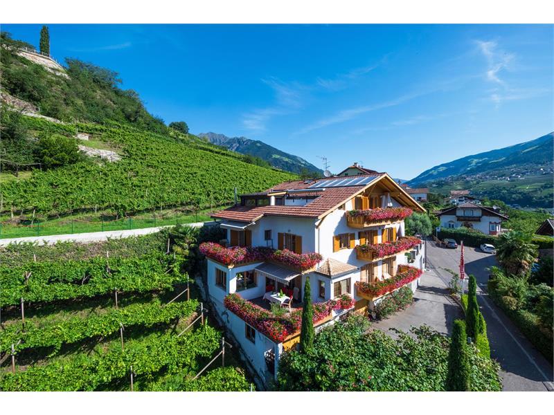 Residence Immenhof - the holiday house