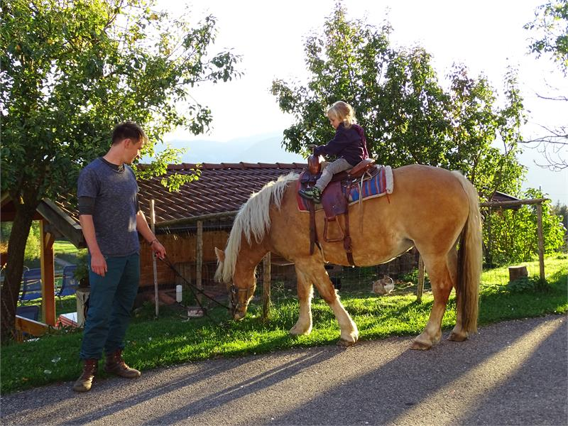 Own riding stable for our guests at Rotsteinhof farm in Verano/Vöran, South Tyrol