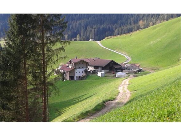 Obergruberhof Summer
