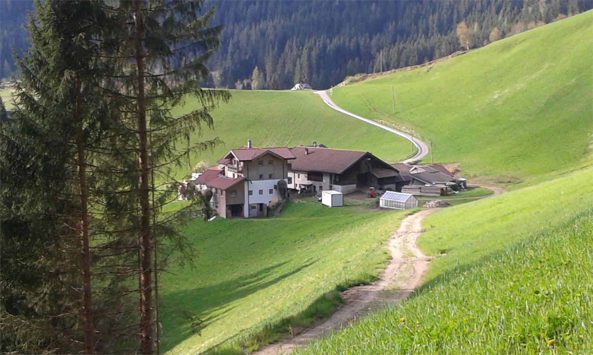 Obergruberhof Sommer