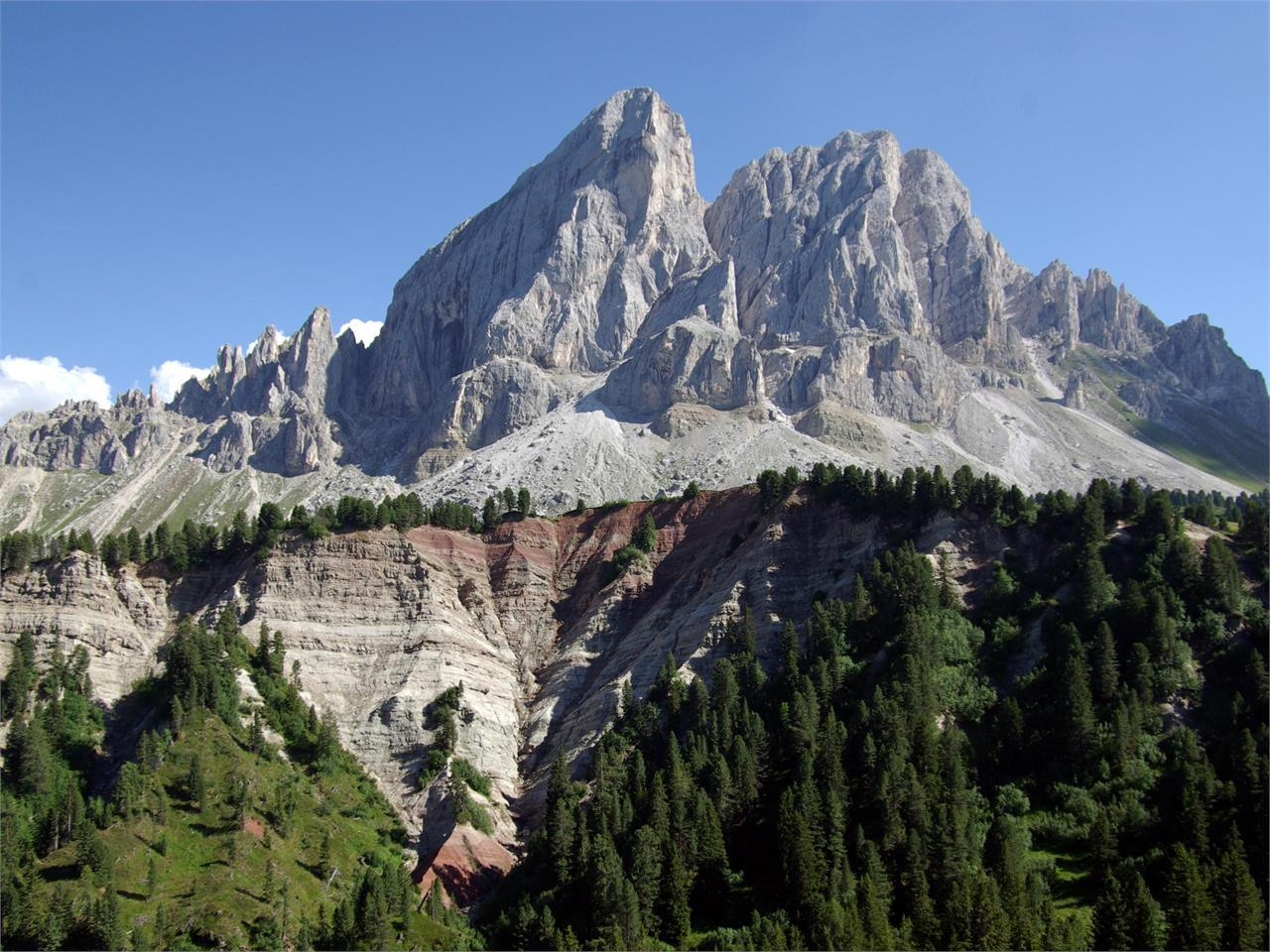 Guided hike: Passo delle Erbe – among fossils and flowers