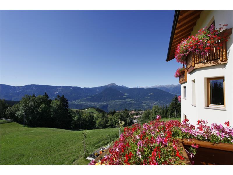 Panoramic view from Beimsteinhof in Verano/Vöran, Alto Adige