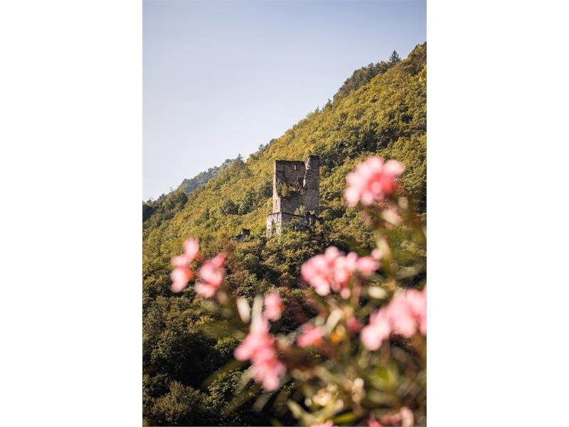 Brandis Castle Lana
