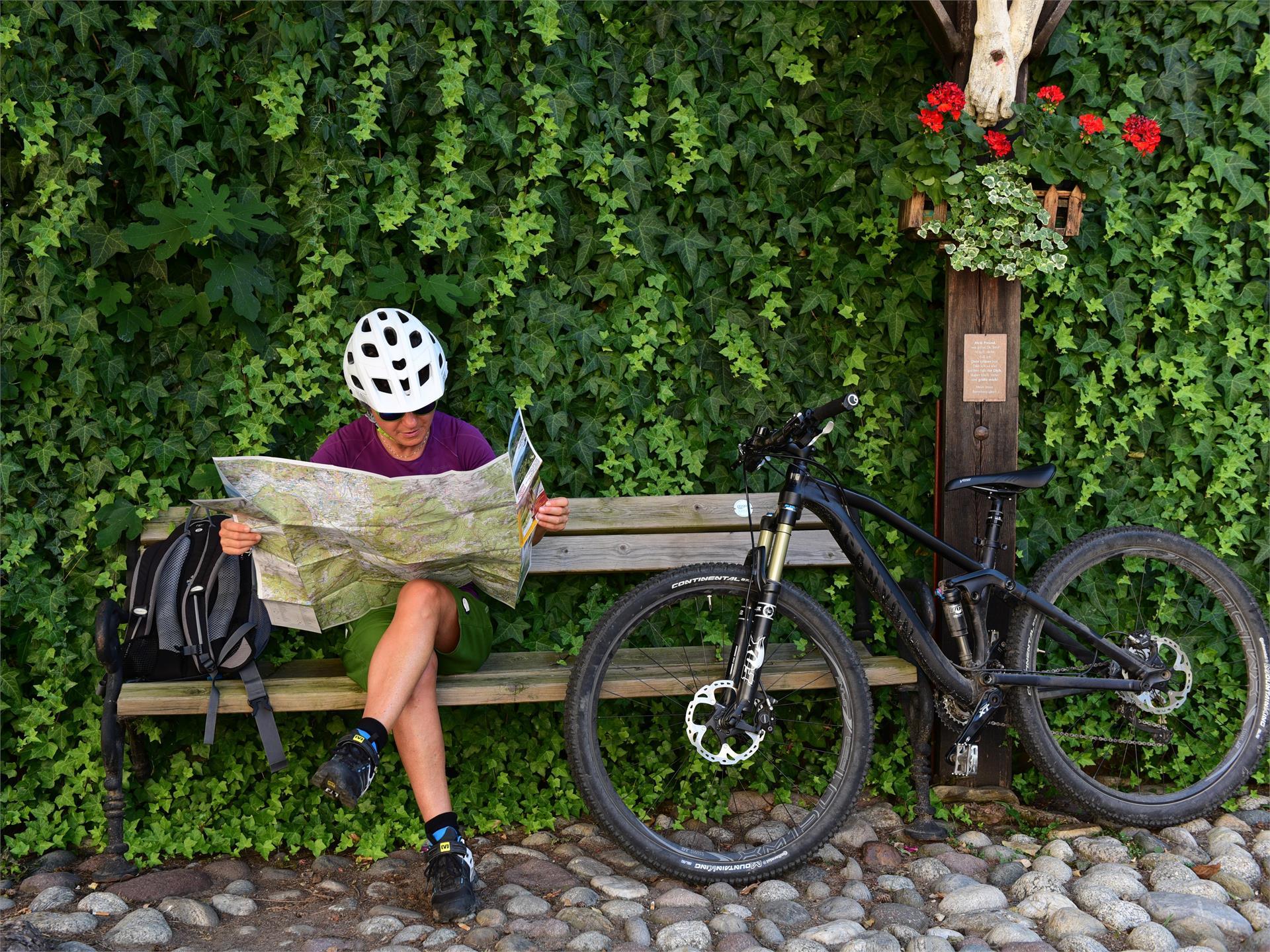 Tour in bicicletta a Bolzano
