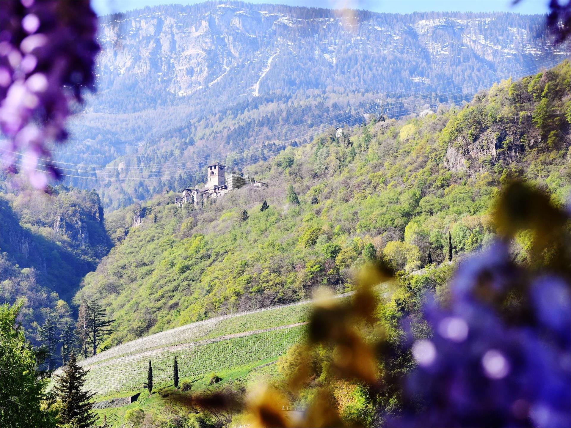 Castle Payersberg