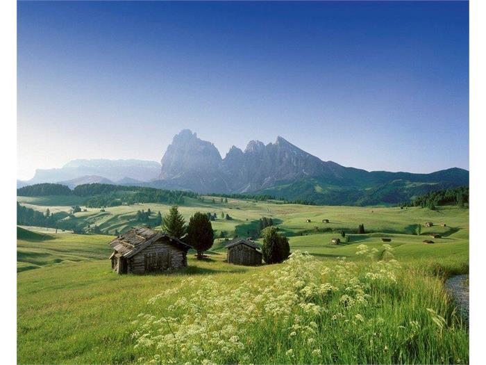 Alpe di Siusi summer