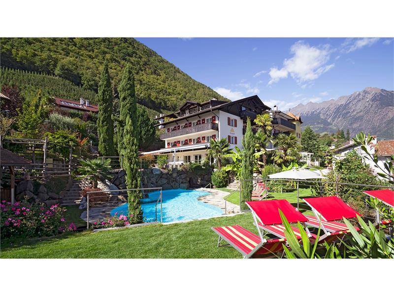 Hotel - pool - garden