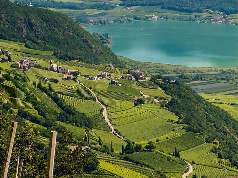 Lago di Caldaro - Termeno