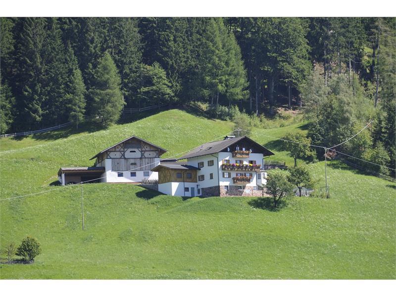 Farm Trotnerhof in Hafling/Avelengo - Farm Holidays in South Tyrol