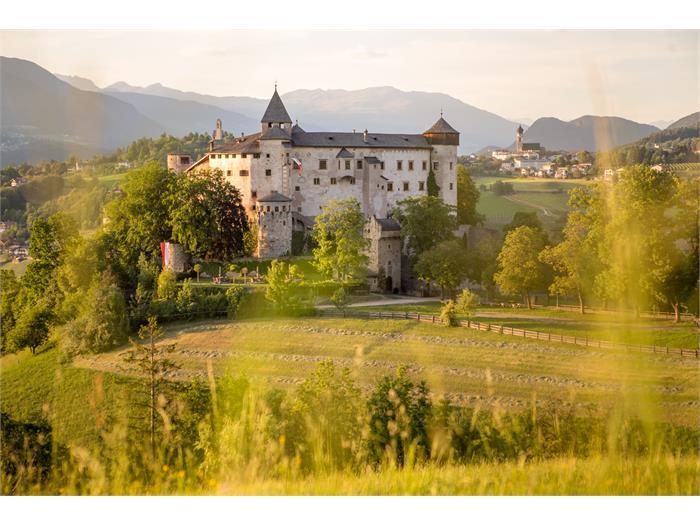 Castle of Presule